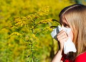 stock photo of ragweed  - Young woman blowing nose in handkerchief because of allergy - JPG