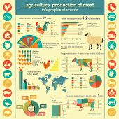 picture of husbandry  - Agriculture animal husbandry infographics Vector illustrationstry info graphics - JPG