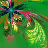pic of asymmetric  - Diagonal asymmetrical multicolor fractal tracery - JPG