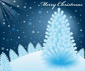 image of christmas cards  - Christmas snow scene at night with blue xmas fir trees on a snowy hill - JPG