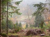 foto of bohemia  - autumn landscape southern Bohemia  - JPG