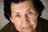 picture of nostalgic  - closeup portrait of grandmother looking nostalgic at camera - JPG