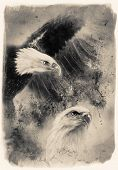 foto of airbrush  - beautiful airbrush painting of two eagles on an abstract background one stretching his black wings to fly on abstract background - JPG