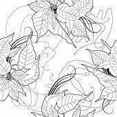 image of poinsettias  - Seamless pattern with black and white poinsettia - JPG