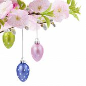 image of egg whites  - Colorful hanging easter eggs with cherry flowers on white bacjground - JPG