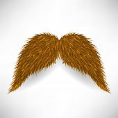 picture of rogue  - Brown Hairy Mustache Isolated on Grey Background - JPG