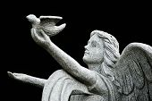 pic of angel-trumpet  - stone marble Angel praying for peace near church - JPG