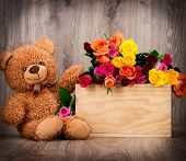 pic of teddy  - Roses and a teddy bear on wooden background - JPG
