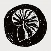 pic of beach shell art  - Shell Doodle - JPG