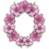 picture of azalea  - Flower frame border - JPG
