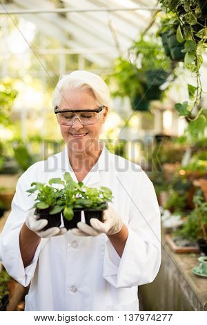 Happy female scientist holding plants at greenhouse