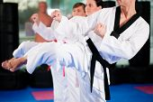 pic of taekwondo  - People in a gym in martial arts training exercising Taekwondo - JPG