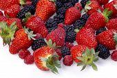 Summer Fruits Salad Ingredients poster