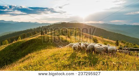 Mountain Range At Sunset A