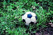 Old soccer ball was dropped at grass.