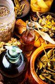 Alternative Herbal Medicine poster
