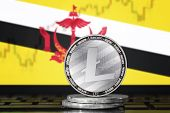 Litecoin (ltc) Cryptocurrency; Coin Litecoin On The Background Of The Flag Of Brunei (nation Of Brun poster
