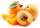 Ripe apricots with apricot leaf isolated on the white background. poster