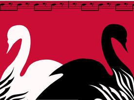 picture of tchaikovsky  - Black and white swan lake poster - JPG