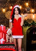 Animals Rights. Little Cutie. Sexy Woman In Santa Hat Hug Puppy. Sensual Girl In Erotic Lingerie. Pu poster