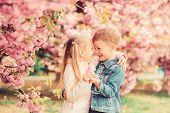 Tender Love Feelings. Couple Kids On Flowers Of Sakura Tree Background. Little Girl Enjoy Spring Flo poster