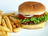 stock photo of french_fried  - A tasty looking Burger with some French Fries - JPG