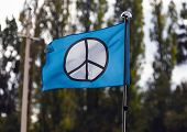 Hippie Flag In The Wind. Hippy Movement Flag Blown Open On Flagpole. A Flag With Hippie Movement Sym poster