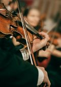 Symphony orchestra on stage, hands playing violin poster