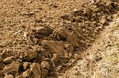 pic of rich soil  - closeup of freshly plowed agricultural field soil land ground after harvest - JPG