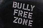 Постер, плакат: Bully свободной зоны
