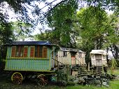foto of gypsy  - Gypsy caravans photographed at Roskilly - JPG