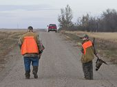 stock photo of ringneck  - Grandpa and grandson out pheasant hunting in the fall - JPG