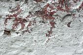 stock photo of lame  - Fragment of old concrete wall with shelled multi - JPG
