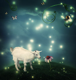 pic of baby goat  - Baby goat in a fantasy hilltop landscape with a snail and butterflies - JPG