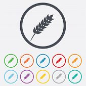 pic of wheat-free  - Gluten free sign icon - JPG