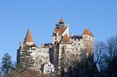 picture of dracula  - Castle Bran  - JPG