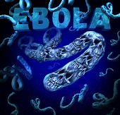 stock photo of hemorrhage  - Ebola outbreak danger as a deadly virus disease medical concept with death skull symbols representing dangerous microbe causing symptoms as hemorrhagic fever as a human health crisis from an infection from a deadly microorganism - JPG