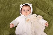picture of baby sheep  - beautiful baby girl with sheep teddy - JPG