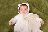 pic of baby sheep  - beautiful baby girl with sheep teddy - JPG