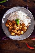 pic of curry chicken  - overhead view of indian chicken curry on plate with copyspace - JPG