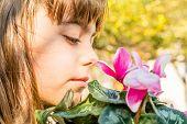 foto of flower girl  - Beautiful little girl is smelling  cyclamen flower - JPG