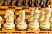 picture of chess piece  - Chess board with starting positions aligned chess pieces - JPG