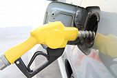 picture of petrol  - fueling the petrol at the Petrol station