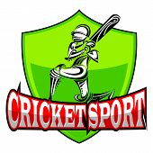 foto of cricket bat  - vector illustration of cricket player playing with bat - JPG