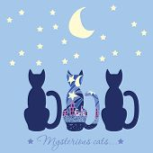 Illustration With Three Cats. Caption Mysterious Cat. Cats Who Are Looking Into The Night Sky The Mo poster