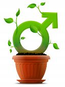 picture of erectile dysfunction  - Stylized plant in shape of man sign in ground - JPG