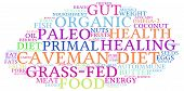 stock photo of fat-guts  - Caveman diet word cloud on a white background - JPG