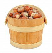 image of hazelnut  - hazelnuts in a wooden bucket isolated background - JPG