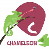 foto of chameleon  - Funny cartoon animals vector alphabet letter for kids from A to Z - JPG