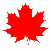 picture of canada maple leaf  - Silhouette of the maple leaf - JPG
